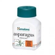 Asparagus - Shatavari 60 caps